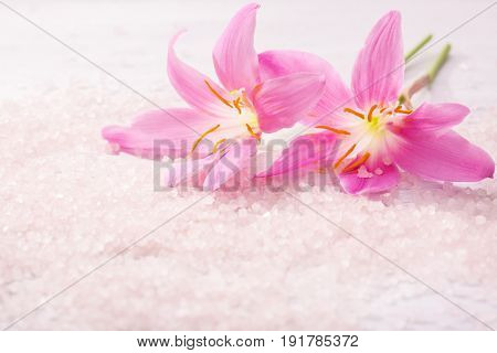 Two  pink  lilies  and  mineral bath salts. Selective focus.   Pink Rain Lily