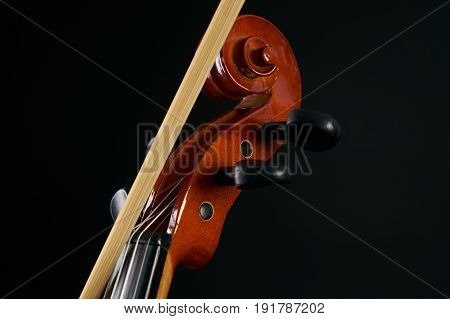 Close-up details of Violin head isolated on black background with copy space. Cello scroll on headstock and tuning pegs.