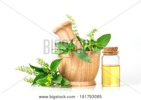 basil in wooden mortar with essential oil alternative herbal medicine and aromatherapy concept
