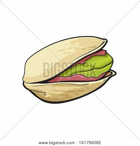 Single pistachio nut, hand drawn sketch style vector illustration isolated on white background. Realistic hand drawing of pistachio nut, vegetarian snack