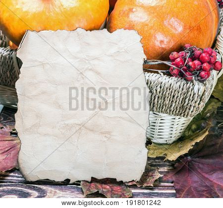 fresh produce pumpkins for Halloween and a sheet of paper for your text. Holiday decorations