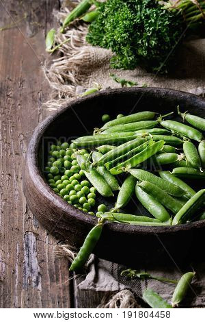 Young organic green pea pods and peas in terracotta tray and bundle of parsley over old dark wooden planks with sackcloth textile background. Harvest, healthy eating.