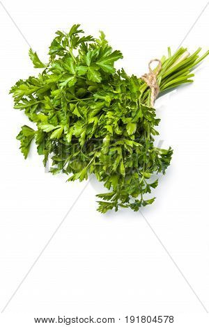 Fresh parsley isolated on white background. Parsley bunch