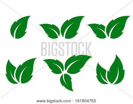 natural set of green leaves silhouettes on white background