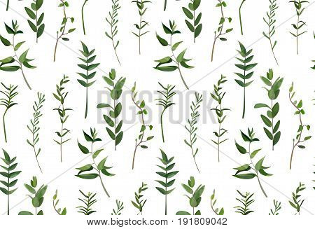 Eucalyptus and greenery different tree foliage natural branches green leaves tropical seamless pattern in watercolor style. Vector decorative beautiful elegant illustration isolated white background