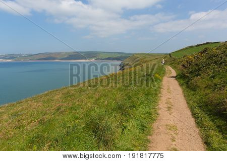 South west coast path to Woolacome Devon England UK in summer with blue sky