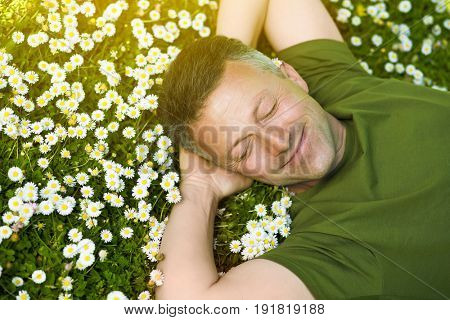 Handsome happy smiling middle-aged man lying on summer meadow green grass with daisy