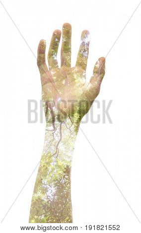 A light-skinned person's hand raised up, symbolising standing up for an opinion or an issue