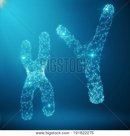 XY-Chromosome Concept for Human Biology Medical Symbol Gene Therapy or Microbiology Genetics Research Composed of polygons. Low poly Illustration Consists of Lines, Dots and Shapes. 3D Rendering