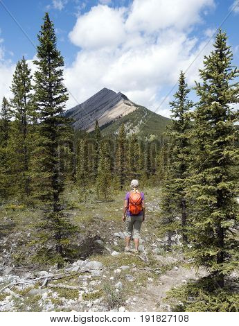 Picture of a female hiker with Nihahi ridge in background,Alberta,Canada.
