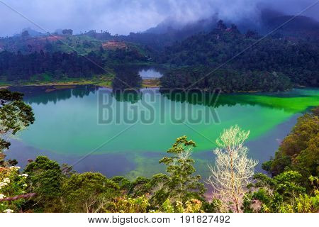 Warna Lake is one of the best tours of Dieng Plateau. Located at 2000mdpl, in indonesia