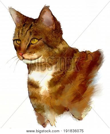 An illustration of a cat using a white background