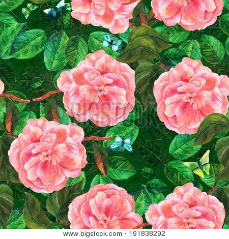 A seamless pattern with a vintage style watercolor drawing of a tender pink camellia flower in bloom, on a branch with green leaves, with teal and green butterflies
