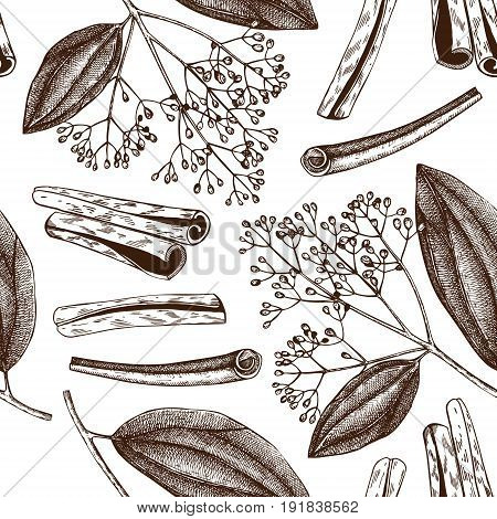 Vector hand drawn background with Cassia. Aromatic and medicinal plant sketch. Perfumery and cosmetics ingredients. Chinese cinnamon. Seamless pattern