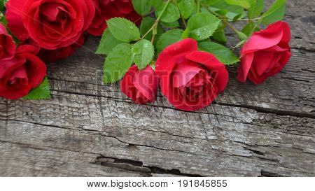 Burgundy roses on wooden background with cracks