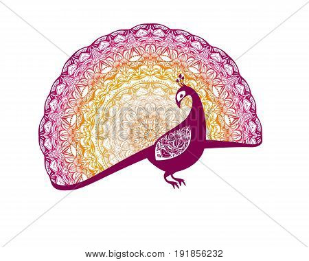 Fire bird (phoenix) with patterned tail. Vector peacock