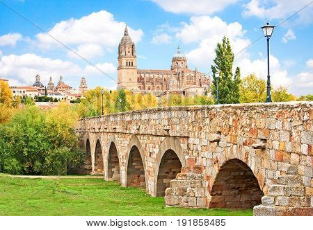 Beautiful View Of The Historic City Of Salamanca With New Cathedral And Roman Bridge, Castilla Y Leo