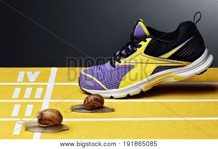 Snails Race On Sports Track Near The Finish Line.with Shoes For Runing.sneakers.concept Of Victory.s