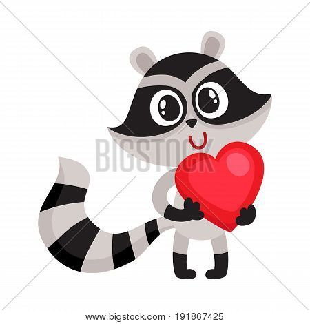 Cute raccoon character holding big red heart, sy, bol of love, cartoon vector illustration isolated on white background. Funny little raccoon with big red heart, front view, full length portrait