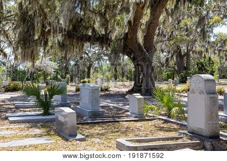 Historic Bonaventure Cemetery in Savannah GA. Jewish headstone with Star of David prominent in the foreground. Large oak tree with hanging Spanish moss.