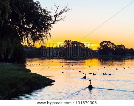 Sunset at Lake Monger in Perth Western Australia.
