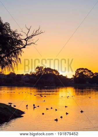 Sunset at Lake Monger in Perth, Western Australia.
