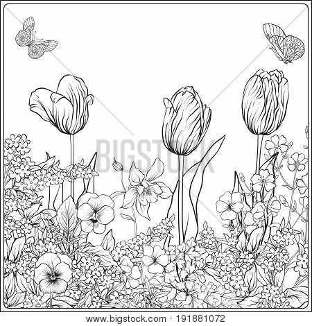 Composition with spring flowers: tulips, daffodils, violets, forget-me-nots in botanical style. Stock line vector illustration. Outline hand drawing coloring page for adult coloring book.