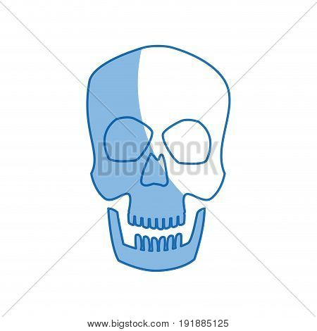 human skull male medical biology science vector illustration