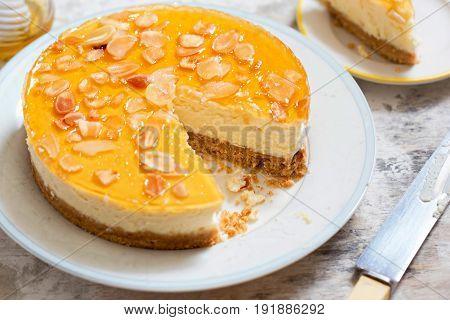 Honey and greek style yoghurt cheesecake on white background