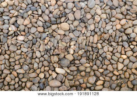 Many rock stone wall texture background photo