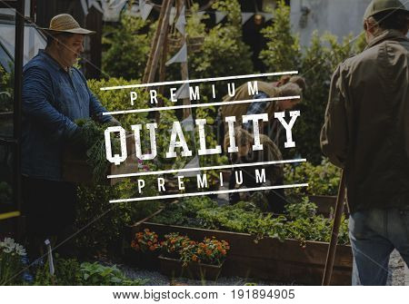 Hundred Percent Approved Quality Certified Guaranteed Stamp Graphic