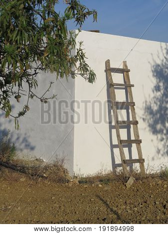 Homemade Ladder Against White Wall