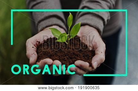 Organic Natural Save Planet Concept