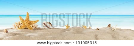 Tropical beach with sea star on sand, summer holiday background. Travel and beach vacation.