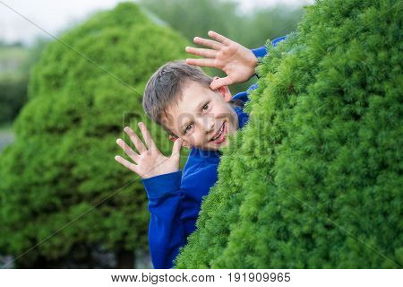 Boy Teenager Peeking Out Of A Bush