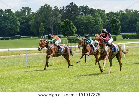 WROCLAW, POLAND - JUNE 18: Finish the race for the 3-year-old Arabian horses group III on 18 June 2017 in Wroclaw, Poland. This is an annual race on the track Partenice open to the public.