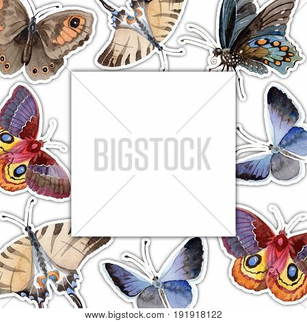 Watercolor butterfly frame tender insect, intresting moth, isolated wing illustration. Butterfly names: swallowtail, monarch, queen. Aquarelle for background, wrapper pattern, frame or border.