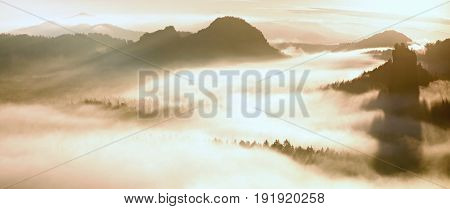 Colorful Morning At The End Of Summer. Colorful Summer Morning With Golden Light And Striped Fog Bet