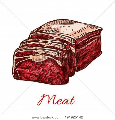 Raw beef meat slice or lump sketch icon. Vector isolated symbol of pork ham tenderloin or sliced steak or lamb brisket on ribs for butchery shop and framer meat product or restaurant design