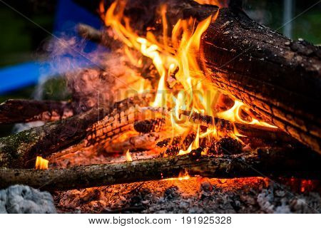 Camp fire in the night with burning wood and flames. Hot fire in the night with yellow flames and natural firewood.