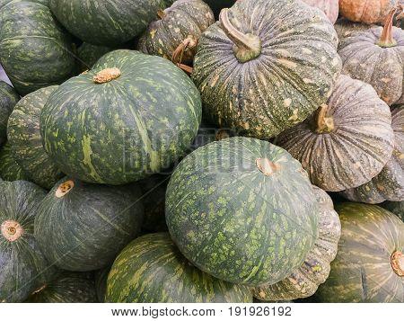 A fresh pumpkin at Thailand fresh market