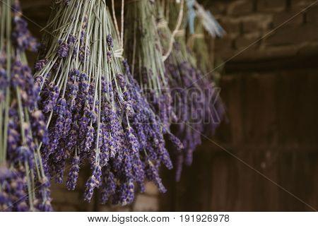 Dried lavender hanging, beautiful lavender bouquet