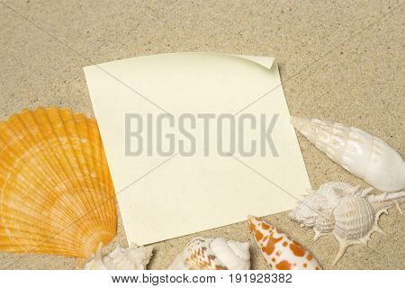 The blank message with the sea shells