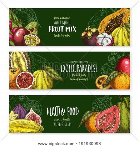Fruits banners of exotic figs, passion fruit or guava and feijoa or carambola star fruit for menu. Vector mix of exotic durian, papaya or dragon fruit pithaya and tropical lychee or rambutan
