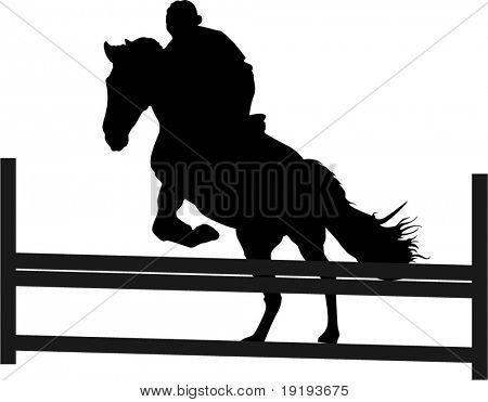 horse jump
