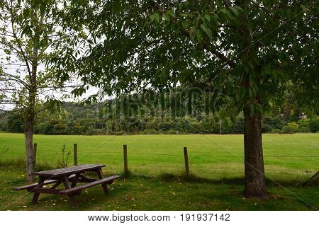 Picnic table under a tree in the Scottish Highlands.