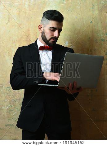 Bearded Lawyer Working