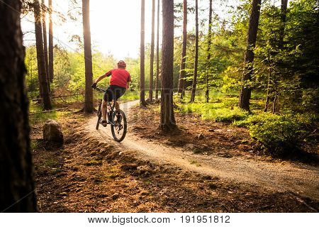Sunset rider in woods. Mountain biker riding on bike in spring inspiring forest landscape. Man cycling MTB on enduro trail track. Sport fitness motivation and inspiration.