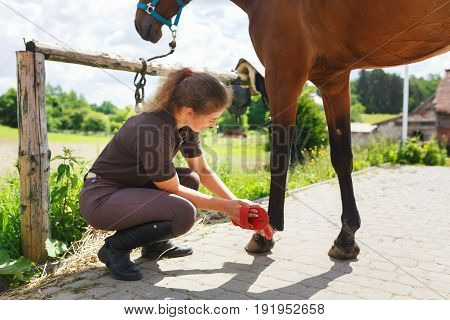 Young rider is cleaning a horse in a stable outdoors