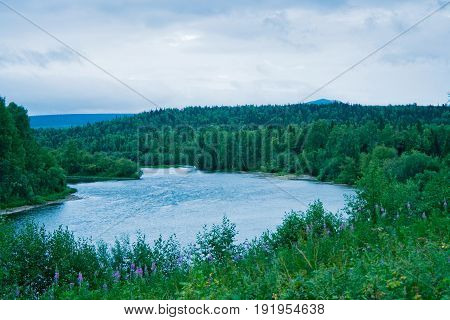 Uls river flowing through the forest. Russia